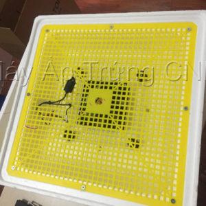 máy ấp trứng xn100 4