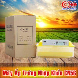 may ap trung nhap khau cn56