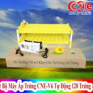 Máy ấp CNE V6 + 2Khay đảo