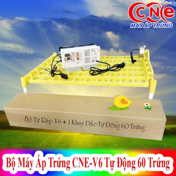 Máy ấp CNE V6 + 1khay đảo