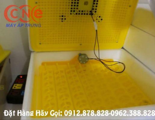 Khay đảo trứng tự động trong máy CN56