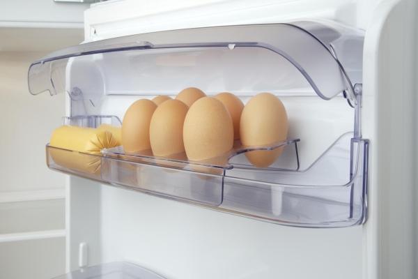bảo quản trứng trong tủ lạnh Máy Ấp Trứng CNE