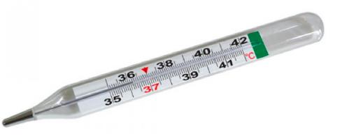 Nhiệt kế thủy ngân để đo nhiệt độ thực trong máy ấp trứng