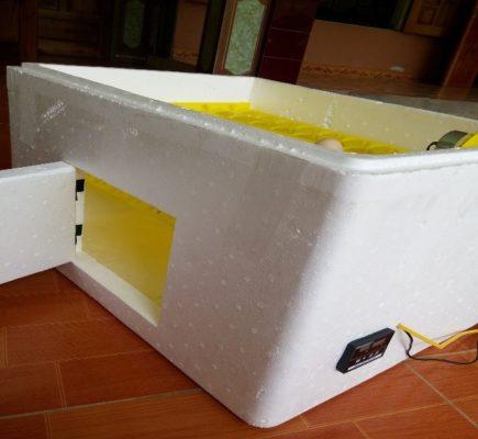 máy ấp trứng đảo tự động