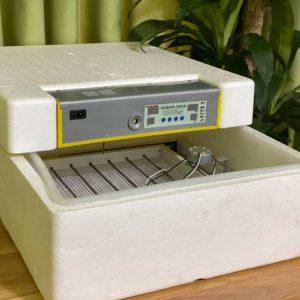 máy ấp trứng mini tự động