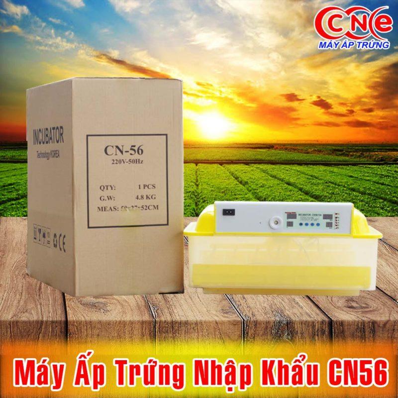 máy ấp trứng CN56